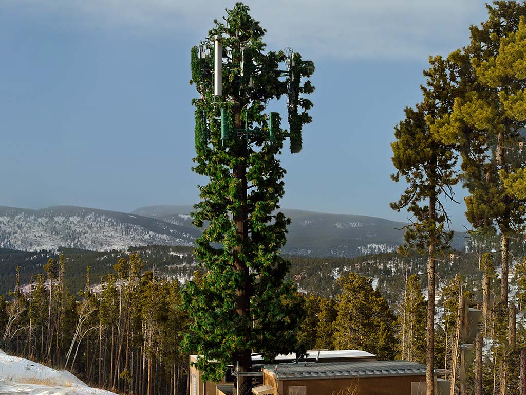 cellular towers camouflaged as trees or structures